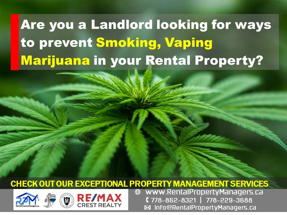 [FAQ] Are you a landlord looking for ways to prevent smoking, vaping, marijuana use or grow-up at your rental property?